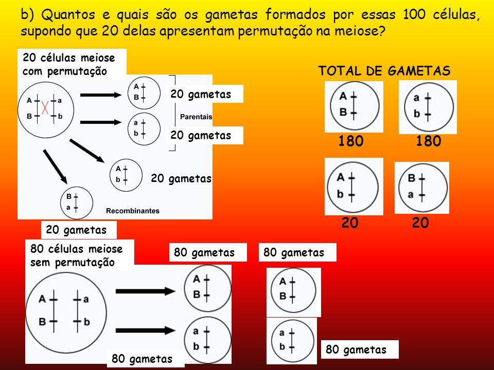 b) Quantos e quais são os gametas formados por essas 100 células, supondo que 20 delas apresentam permutação na meiose? 20 gametas 20 células meiose c