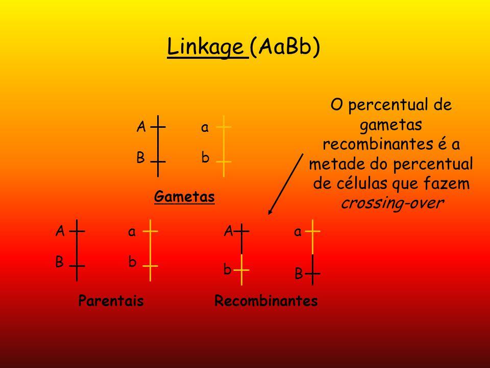 Linkage (AaBb) A B a b Gametas A B a b A b a B ParentaisRecombinantes O percentual de gametas recombinantes é a metade do percentual de células que fa