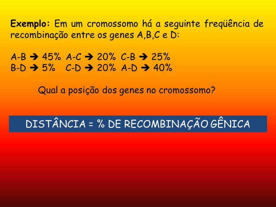 Exemplo: Em um cromossomo há a seguinte freqüência de recombinação entre os genes A,B,C e D: A-B 45%A-C 20%C-B 25% B-D 5%C-D 20%A-D 40% Qual a posição