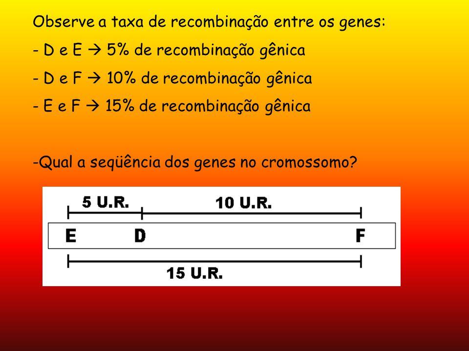 Observe a taxa de recombinação entre os genes: - D e E 5% de recombinação gênica - D e F 10% de recombinação gênica - E e F 15% de recombinação gênica