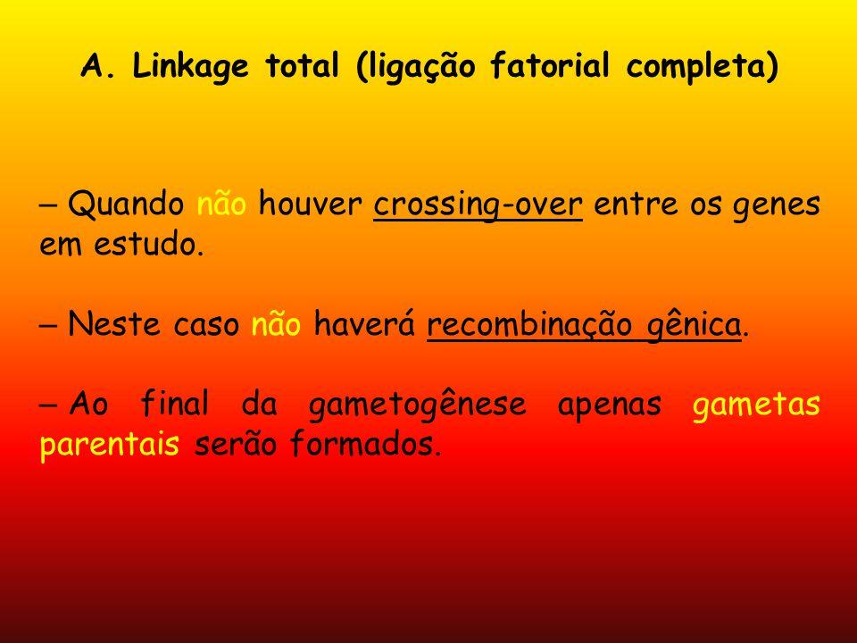 A. Linkage total (ligação fatorial completa) – Quando não houver crossing-over entre os genes em estudo. – Neste caso não haverá recombinação gênica.