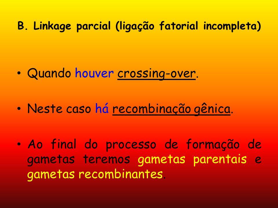 B. Linkage parcial (ligação fatorial incompleta) Quando houver crossing-over. Neste caso há recombinação gênica. Ao final do processo de formação de g