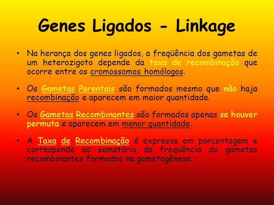 Genes Ligados - Linkage Na herança dos genes ligados, a freqüência dos gametas de um heterozigoto depende da taxa de recombinação que ocorre entre os