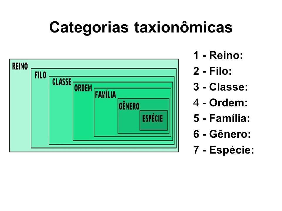 Categorias taxionômicas 1 - Reino: 2 - Filo: 3 - Classe: 4 - Ordem: 5 - Família: 6 - Gênero: 7 - Espécie: