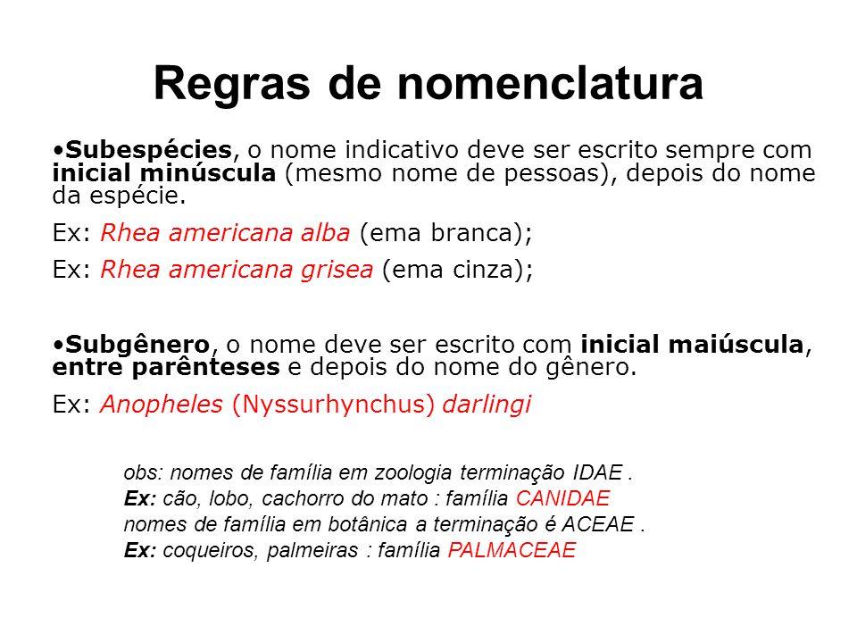 Regras de nomenclatura obs: nomes de família em zoologia terminação IDAE. Ex: cão, lobo, cachorro do mato : família CANIDAE nomes de família em botâni