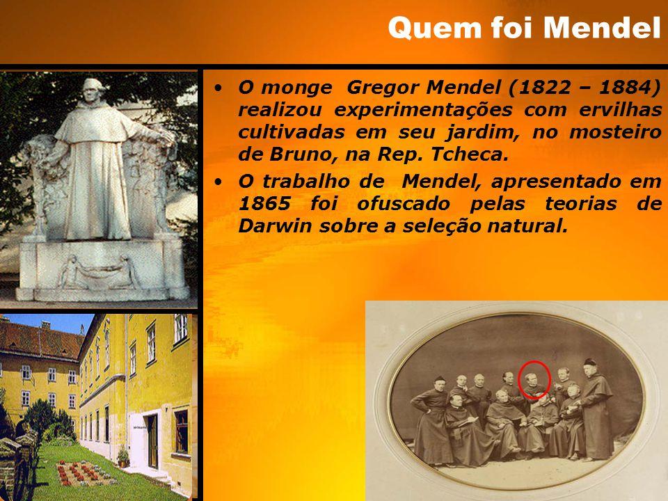 Quem foi Mendel O monge Gregor Mendel (1822 – 1884) realizou experimentações com ervilhas cultivadas em seu jardim, no mosteiro de Bruno, na Rep. Tche