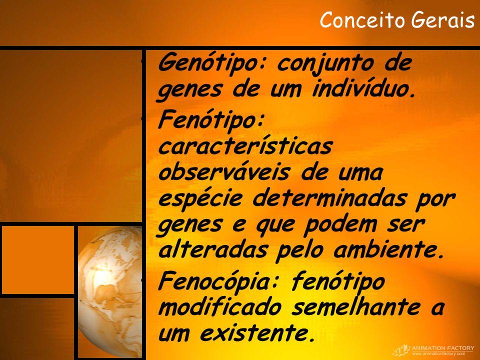 Conceito Gerais Genótipo: conjunto de genes de um indivíduo. Fenótipo: características observáveis de uma espécie determinadas por genes e que podem s