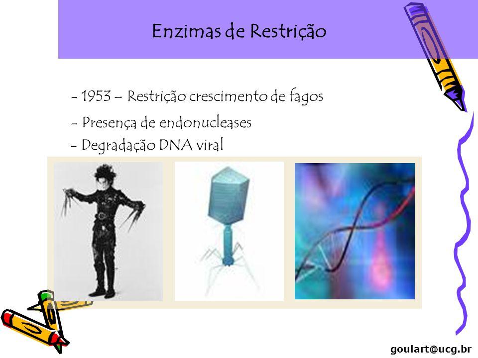 Enzimas de Restrição goulart@ucg.br - 1953 – Restrição crescimento de fagos - Presença de endonucleases - Degradação DNA viral