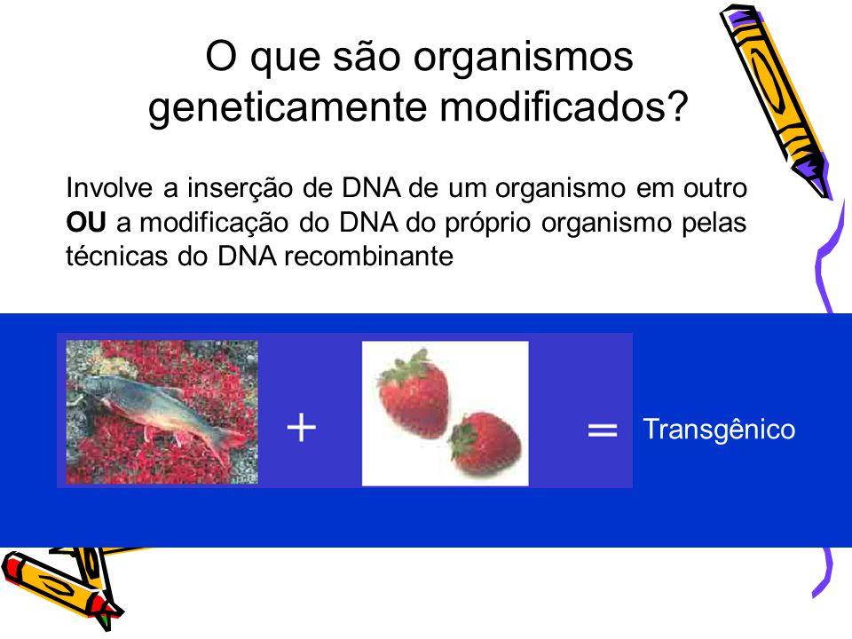 MANIPULAÇÃO GENÉTICA Técnica DNA Recombinante ou Engenharia genética - Novos organismos – características não encontradas na natureza - Expressão DNA exógeno – espécies diferentes