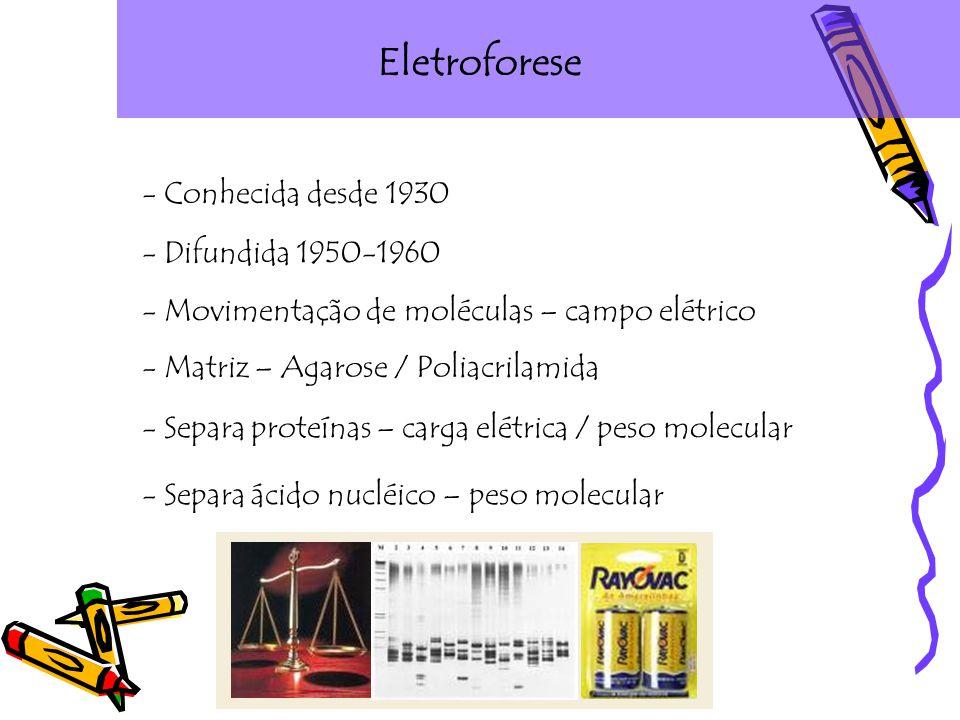 Eletroforese