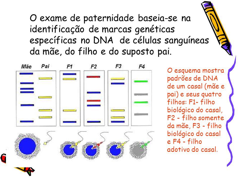 O esquema mostra padrões de DNA de um casal (mãe e pai) e seus quatro filhos: F1- filho biológico do casal, F2 - filho somente da mãe, F3 - filho biológico do casal e F4 - filho adotivo do casal.