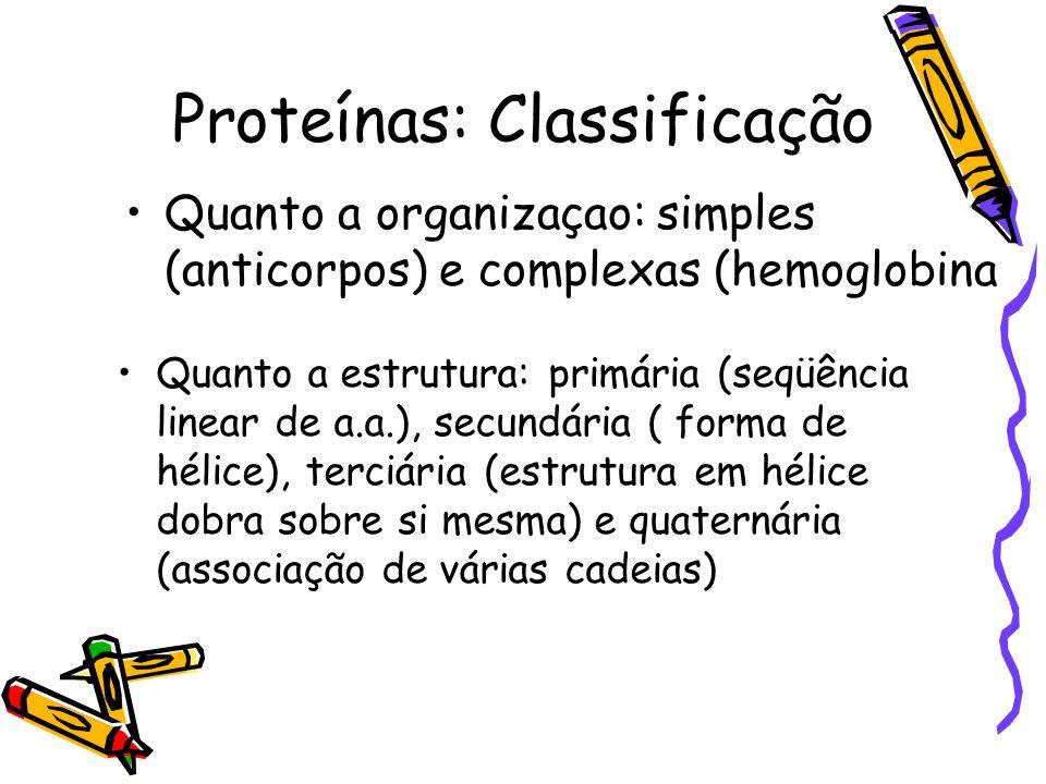 Proteínas: Classificação Quanto a estrutura: primária (seqüência linear de a.a.), secundária ( forma de hélice), terciária (estrutura em hélice dobra sobre si mesma) e quaternária (associação de várias cadeias) Quanto a organizaçao: simples (anticorpos) e complexas (hemoglobina