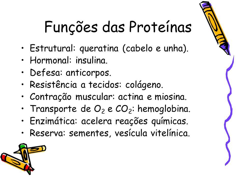 Funções das Proteínas Estrutural: queratina (cabelo e unha).