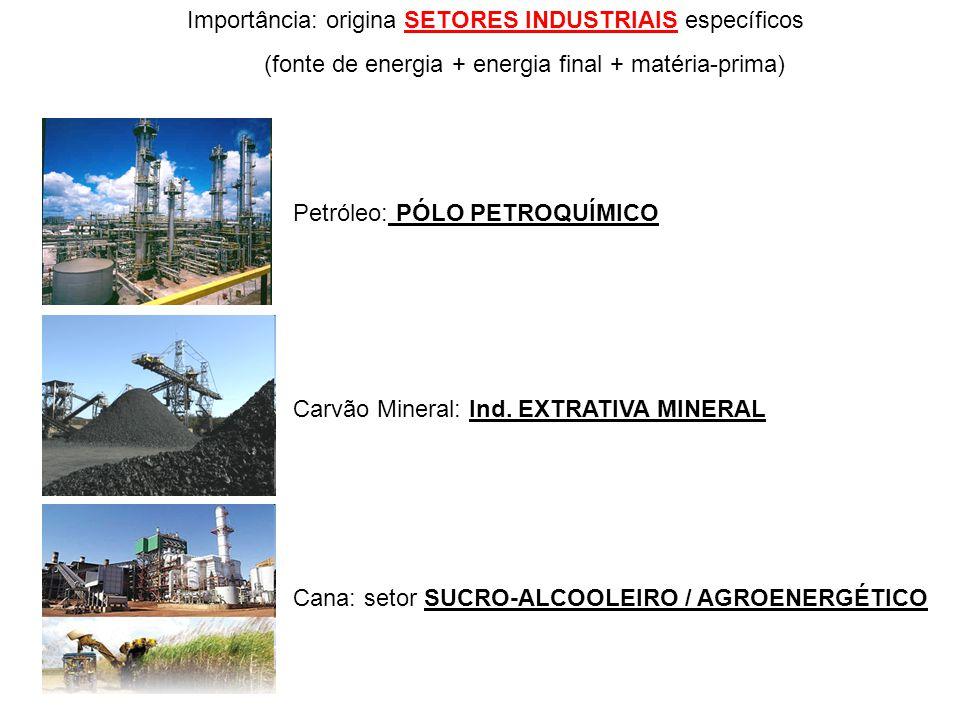 Importância: origina SETORES INDUSTRIAIS específicos (fonte de energia + energia final + matéria-prima) Petróleo: PÓLO PETROQUÍMICO Carvão Mineral: In