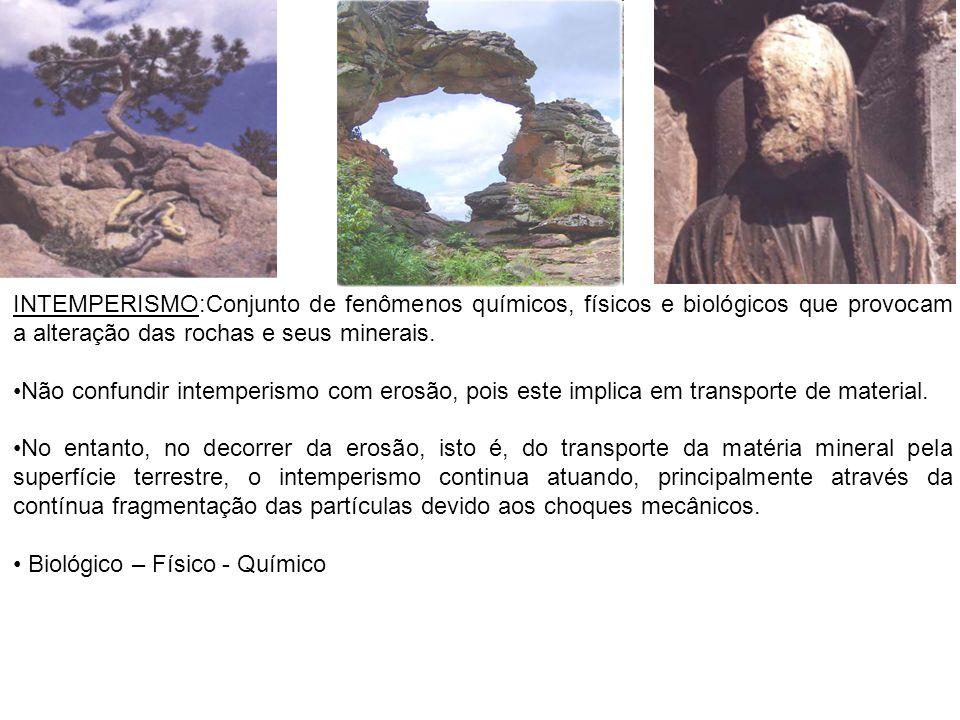 INTEMPERISMO:Conjunto de fenômenos químicos, físicos e biológicos que provocam a alteração das rochas e seus minerais. Não confundir intemperismo com