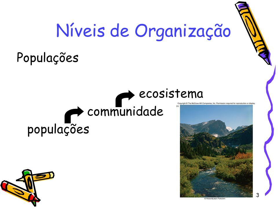 13 Populações ecosistema communidade populações Níveis de Organização