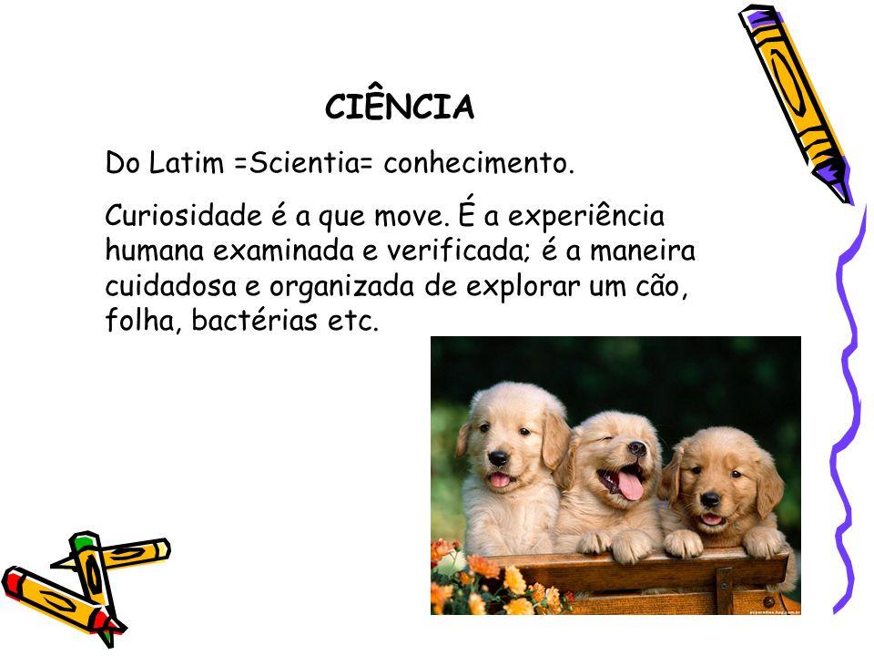 CIÊNCIA Do Latim =Scientia= conhecimento.Curiosidade é a que move.