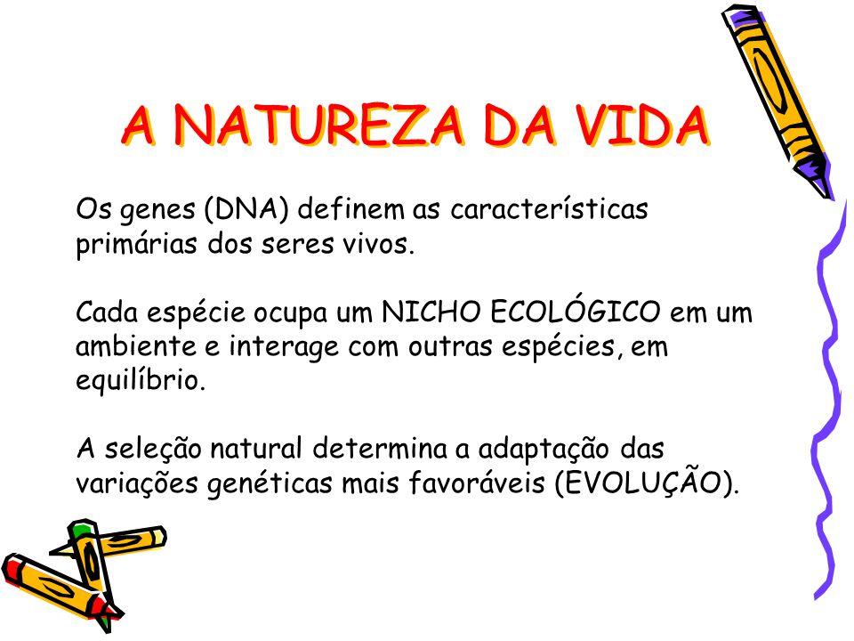 Os genes (DNA) definem as características primárias dos seres vivos.