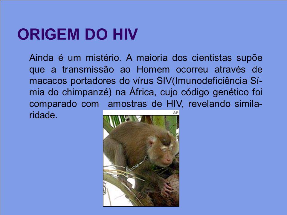 ORIGEM DO HIV Ainda é um mistério.