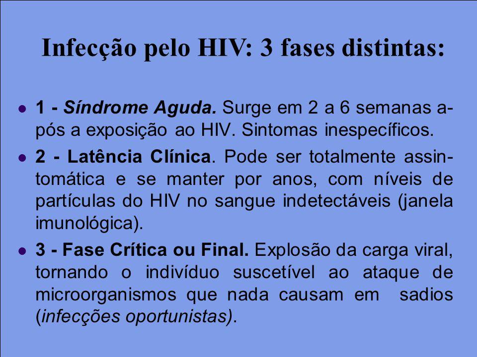 1 - Síndrome Aguda. Surge em 2 a 6 semanas a- pós a exposição ao HIV. Sintomas inespecíficos. 2 - Latência Clínica. Pode ser totalmente assin- tomátic