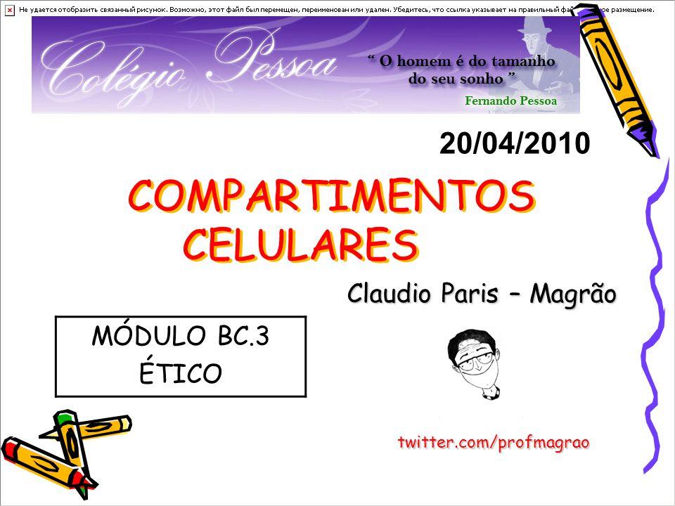 COMPARTIMENTOS CELULARES Claudio Paris – Magrão 20/04/2010 twitter.com/profmagrao MÓDULO BC.3 ÉTICO