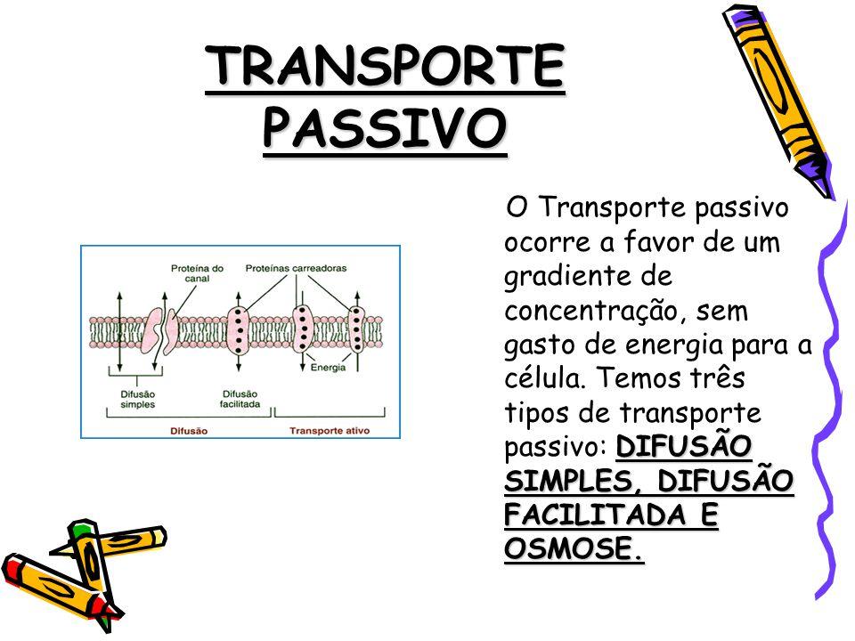 TRANSPORTE PASSIVO DIFUSÃO SIMPLES, DIFUSÃO FACILITADA E OSMOSE.