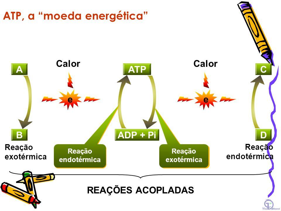 Reações Exotérmica Endotérmica Nível de energia Reagentes Produtos Reagentes Produtos