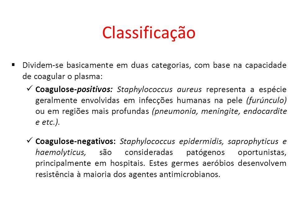 Classificação Dividem-se basicamente em duas categorias, com base na capacidade de coagular o plasma: Coagulose-positivos: Staphylococcus aureus representa a espécie geralmente envolvidas em infecções humanas na pele (furúnculo) ou em regiões mais profundas (pneumonia, meningite, endocardite e etc.).