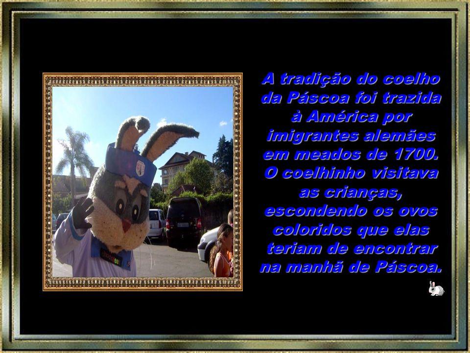 Como a Páscoa é ressurreição, é renascimento, nada melhor do que coelhos, para simbolizar a fertilidade!
