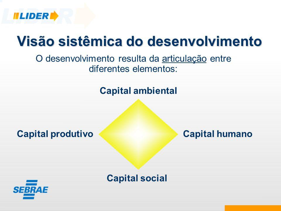Visão sistêmica do desenvolvimento O desenvolvimento resulta da articulação entre diferentes elementos: Capital ambiental Capital humano Capital socia