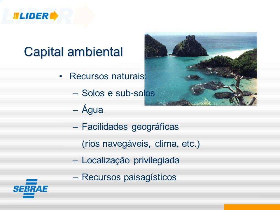 Recursos naturais: –Solos e sub-solos –Água –Facilidades geográficas (rios navegáveis, clima, etc.) –Localização privilegiada –Recursos paisagísticos