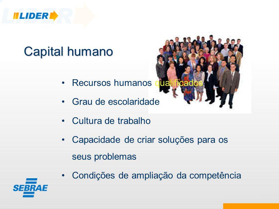 Capital humano Recursos humanos qualificados Grau de escolaridade Cultura de trabalho Capacidade de criar soluções para os seus problemas Condições de