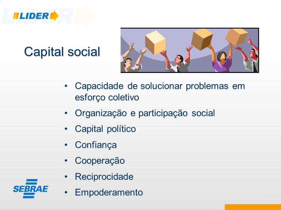 Capital social Capacidade de solucionar problemas em esforço coletivo Organização e participação social Capital político Confiança Cooperação Reciproc