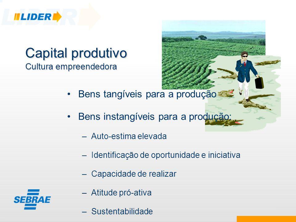 Capital produtivo Cultura empreendedora Bens tangíveis para a produção Bens instangíveis para a produção: –Auto-estima elevada –Identificação de oport