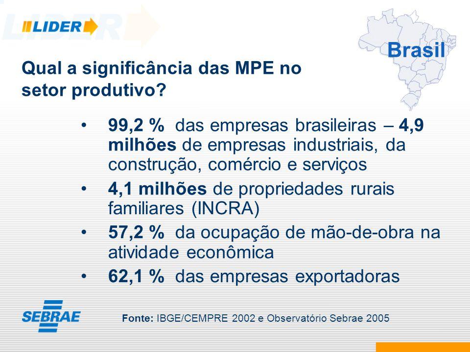 99,2 % das empresas brasileiras – 4,9 milhões de empresas industriais, da construção, comércio e serviços 4,1 milhões de propriedades rurais familiare