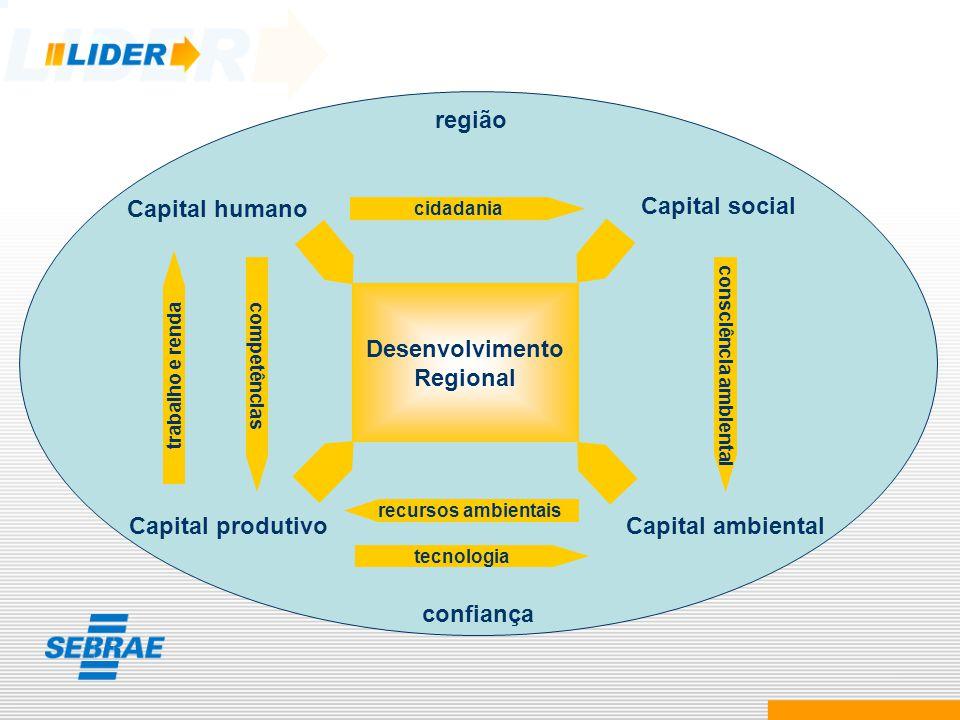 Capital ambiental Capital humano Capital social Capital produtivo Desenvolvimento Regional cidadania tecnologia recursos ambientais consciência ambien