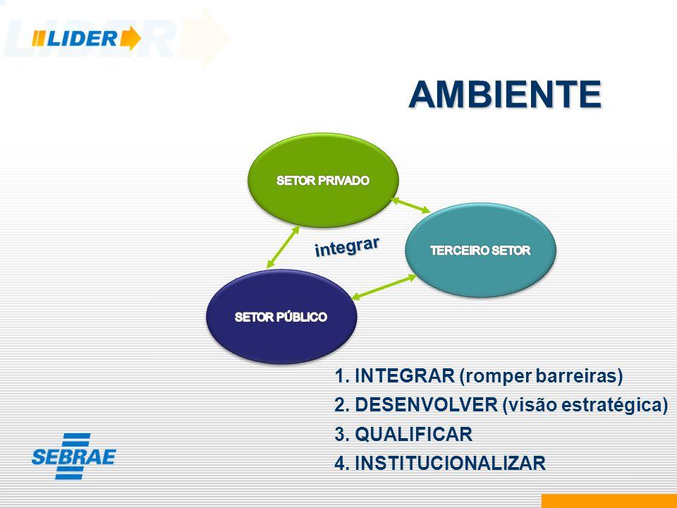 1. INTEGRAR (romper barreiras) 2. DESENVOLVER (visão estratégica) 3. QUALIFICAR 4. INSTITUCIONALIZAR AMBIENTE integrar