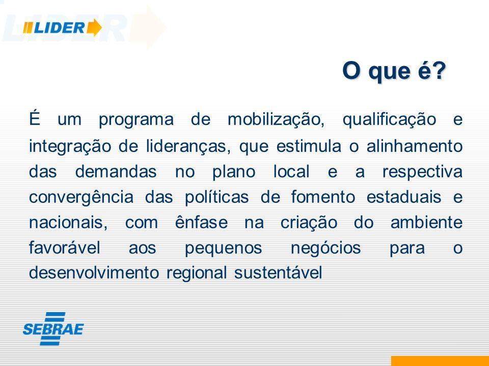 É um programa de mobilização, qualificação e integração de lideranças, que estimula o alinhamento das demandas no plano local e a respectiva convergên