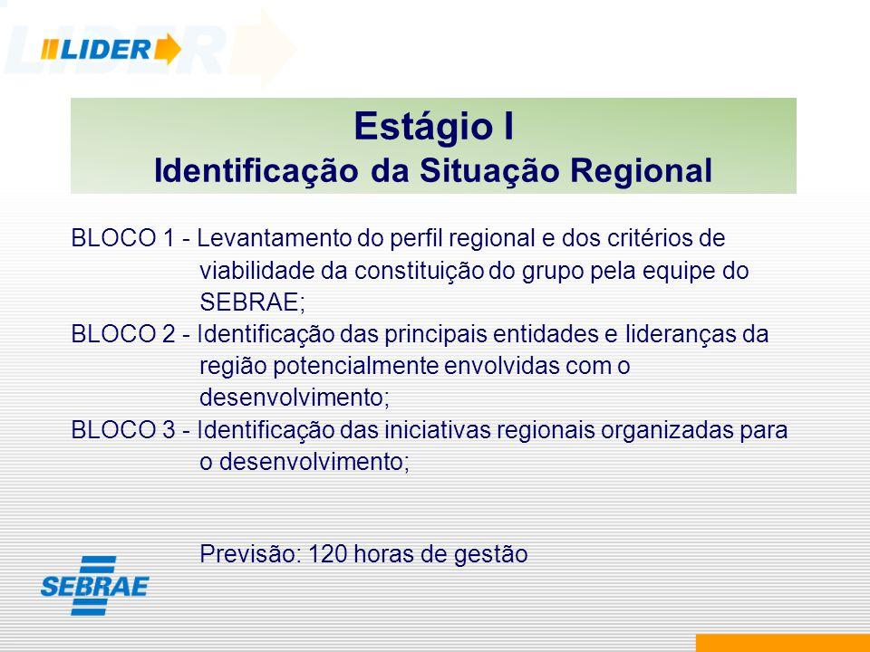 Estágio I Identificação da Situação Regional BLOCO 1 - Levantamento do perfil regional e dos critérios de viabilidade da constituição do grupo pela eq