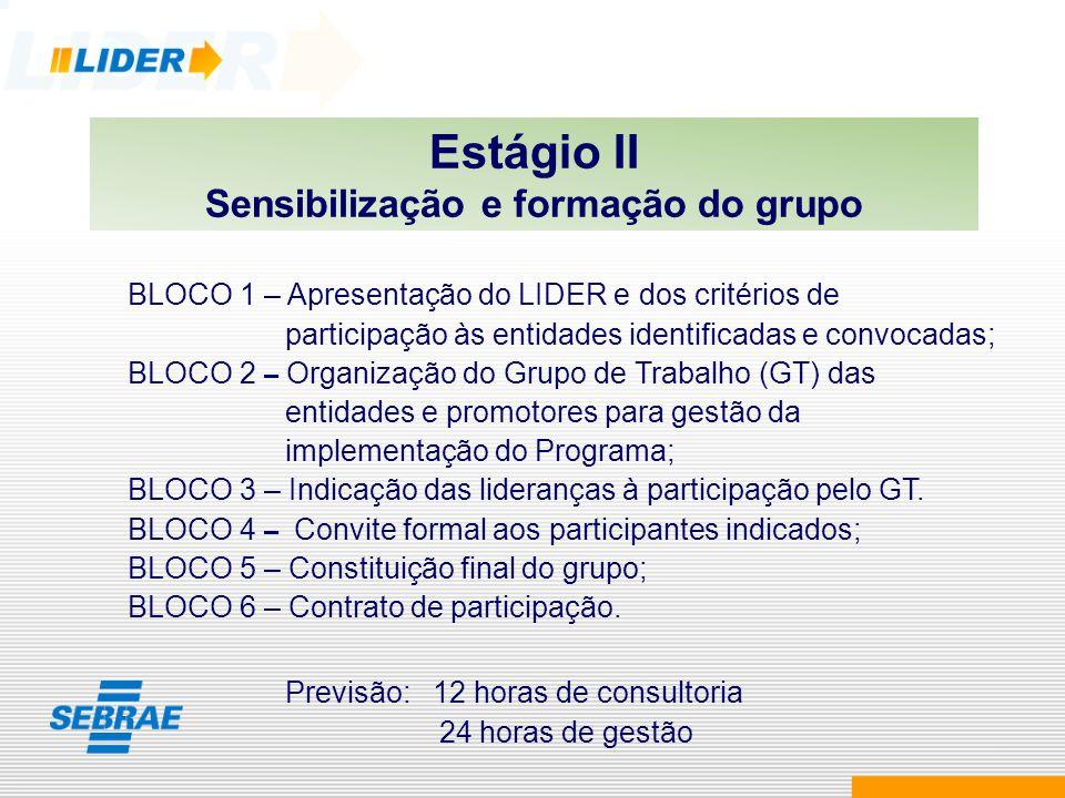 Estágio II Sensibilização e formação do grupo BLOCO 1 – Apresentação do LIDER e dos critérios de participação às entidades identificadas e convocadas;