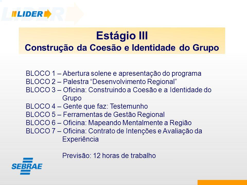 Estágio III Construção da Coesão e Identidade do Grupo BLOCO 1 – Abertura solene e apresentação do programa BLOCO 2 – Palestra Desenvolvimento Regiona