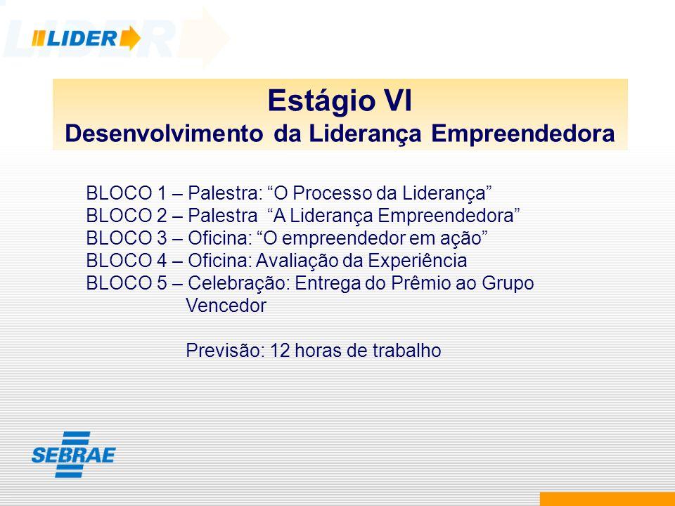 Estágio VI Desenvolvimento da Liderança Empreendedora BLOCO 1 – Palestra: O Processo da Liderança BLOCO 2 – Palestra A Liderança Empreendedora BLOCO 3