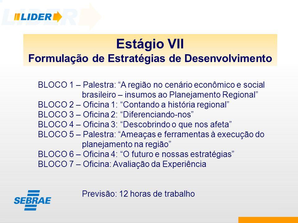 Estágio VII Formulação de Estratégias de Desenvolvimento BLOCO 1 – Palestra: A região no cenário econômico e social brasileiro – insumos ao Planejamen