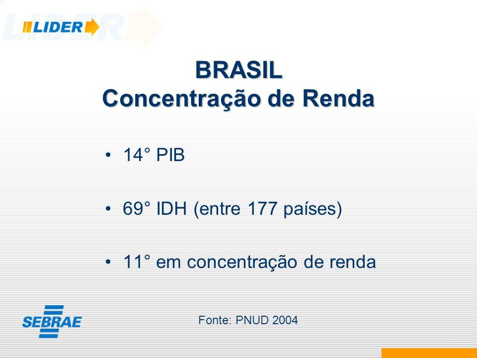 Concentração de Renda Distância entre os 20% mais pobres e os 20% mais ricos, para os 10 países com maiores PIB 3,4 vezes - Japão 4,3 vezes - Alemanha 4,9 vezes - Índia 5,5 vezes - Canadá e França 6,0 vezes - Espanha 6,5 vezes - Itália 7,2 vezes - Reino Unido 8,4 vezes - EUA 10,7 vezes - China 23,7 vezes - Brasil23,7 vezes - Brasil Fonte: PNUD 2004