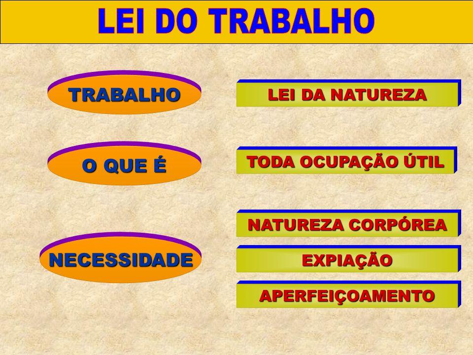 TRABALHO LEI DA NATUREZA NECESSIDADE TODA OCUPAÇÃO ÚTIL NATUREZA CORPÓREA EXPIAÇÃO APERFEIÇOAMENTO O QUE É