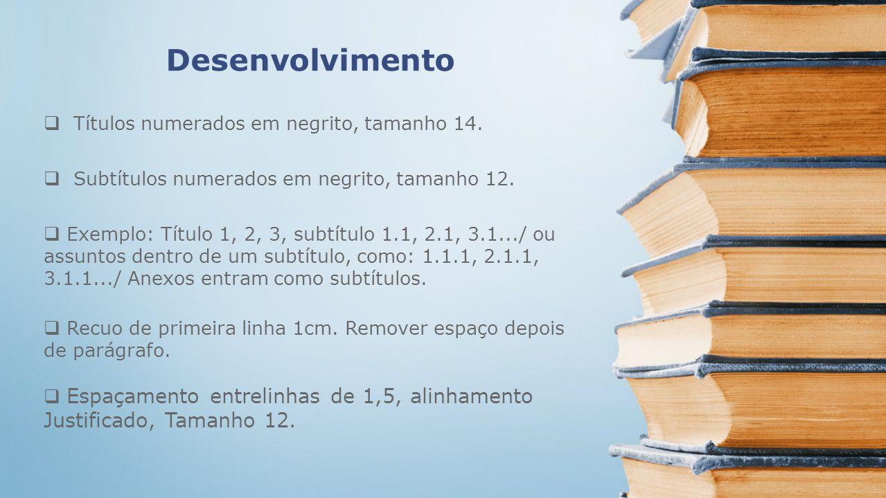 Desenvolvimento Títulos numerados em negrito, tamanho 14. Subtítulos numerados em negrito, tamanho 12. Exemplo: Título 1, 2, 3, subtítulo 1.1, 2.1, 3.