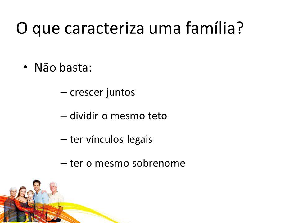 O que caracteriza uma família.