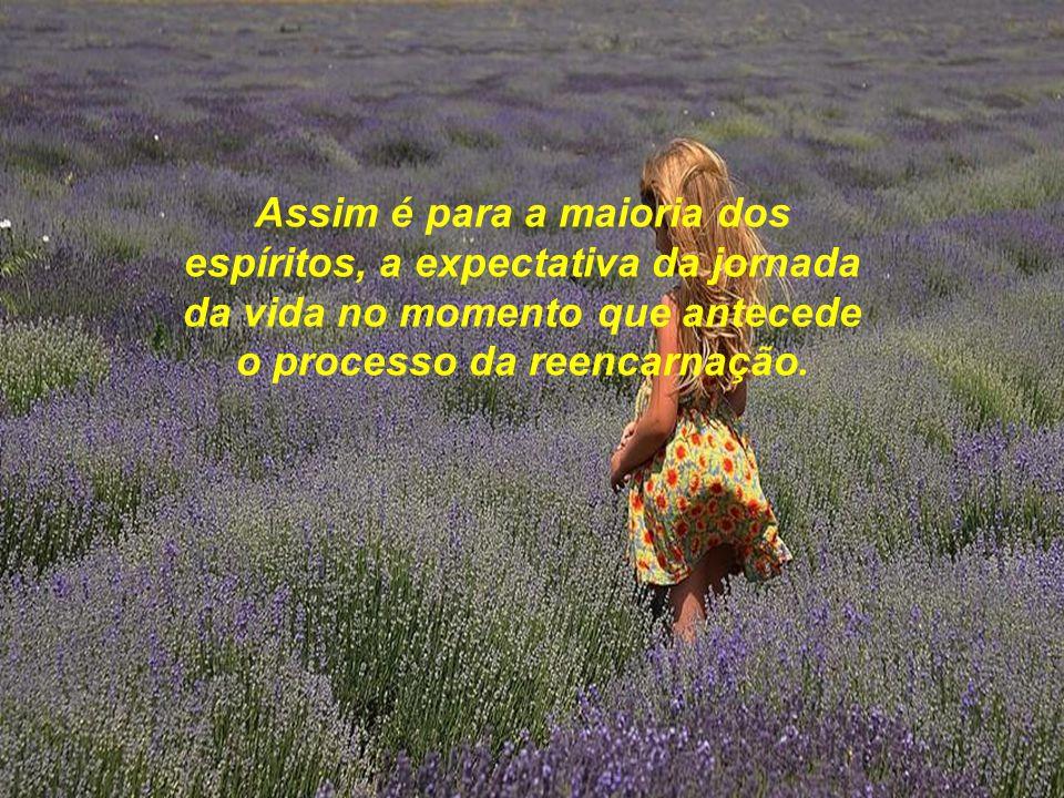 Assim é para a maioria dos espíritos, a expectativa da jornada da vida no momento que antecede o processo da reencarnação.