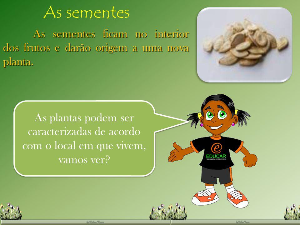 As sementes As sementes ficam no interior dos frutos e darão origem a uma nova planta. As plantas podem ser caracterizadas de acordo com o local em qu