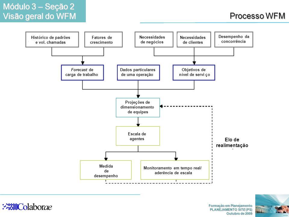 Formação em Planejamento PLANEJAMENTO SITE (PS) Outubro de 2009 Processo WFM Módulo 3 – Seção 2 Visão geral do WFM